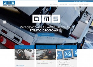 DMS Auto Transport